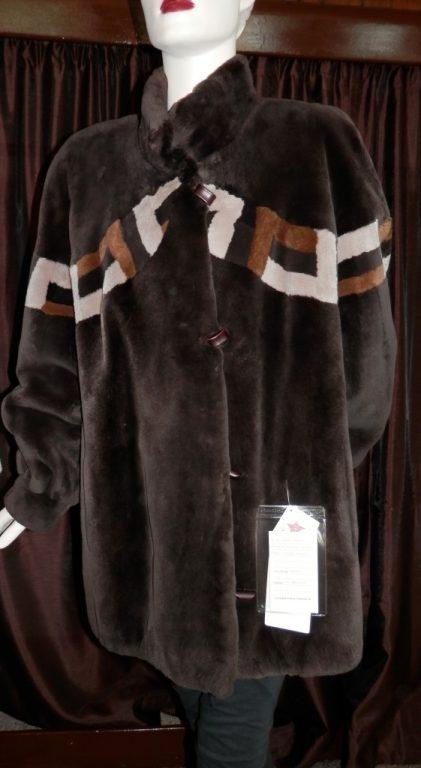 brown beaver1